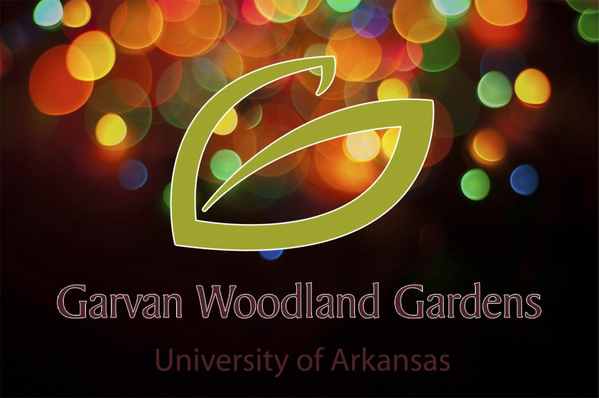 Garvan Woodland Gardens Holiday Lights 2016
