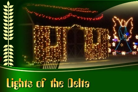 Lights of the Delta 2016